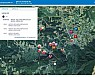평창올림픽기간 스마트 재난상황관리시스템 활용 '톡톡'