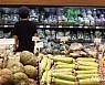 [주간 밥상물가]한달째 폭염 채소·육류 상승세…고등어 하락