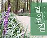 [도심 속 산책길] 날선 소음 안녕~ '맥문동 숲길'
