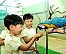 황룡강변에 '희귀 앵무새 체험관' 오픈