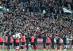 축구붐, 파나마전도 만석···유례없는 4경기 연속매진