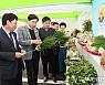 [보성소식] 제20회 농업인 한마음 대회 등