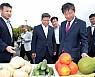 '온난화' 전남 아열대작물 재배 급증…권역별 집중화 `경쟁력 제고'