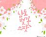 [도시樂]'생기충전엔 벚꽃이지' 명소 9곳을 골라봤어