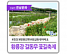 꽃축제가 활짝 피는 곳,  장성 황룡강 길동무 꽃길축제