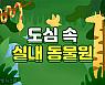[도시樂] 도심에서 만난 '작은 정글'로 떠나자