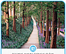 환상적인 보랏빛 꽃향기가 황홀한 맥문동 숲길