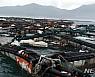 [신안소식]'태풍 링링 피해' 흑산도 섬 우럭축제 취소 등