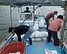 광양시, 섬진강 상류에 재첩 8톤 살포···