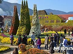 '꽃의 향연' 거제섬꽃축제 26일 개막···국내 최대 유리온실 '정글돔' 공개