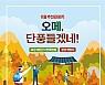 오메, 단풍들겠네! 전남 11월 추천 관광지
