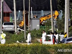 연천군 돼지사체 침출수 대량 유출···당국