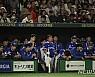 [프리미어12 결산]일본에 막힌 한국, 올림픽 2연패로 설욕한다